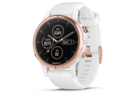 Garmin fenix 5S Plus Rose Gold-tone with White Band