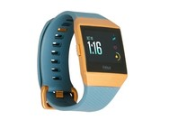 Fitbit Ionic Watch (Slate Blue/Burnt Orange)