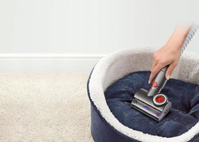 Dyson cinetic big ball absolute %2812%29
