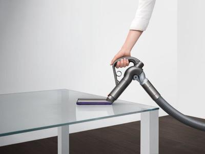 Dyson cinetic big ball absolute %2813%29